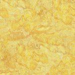 BN Van Gogh